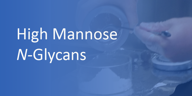 High Mannose N-Glycans